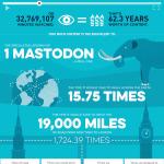 scion-Scion AV infographic